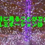 東京都内で3月に見られるイルミネーション3選~ホワイトデーにもオススメ~