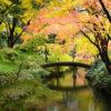 【東京編】秋は紅葉の季節!おススメ紅葉スポットまとめ