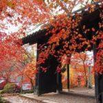 【九州】秋は紅葉の季節!おススメ紅葉スポットまとめ【その1】